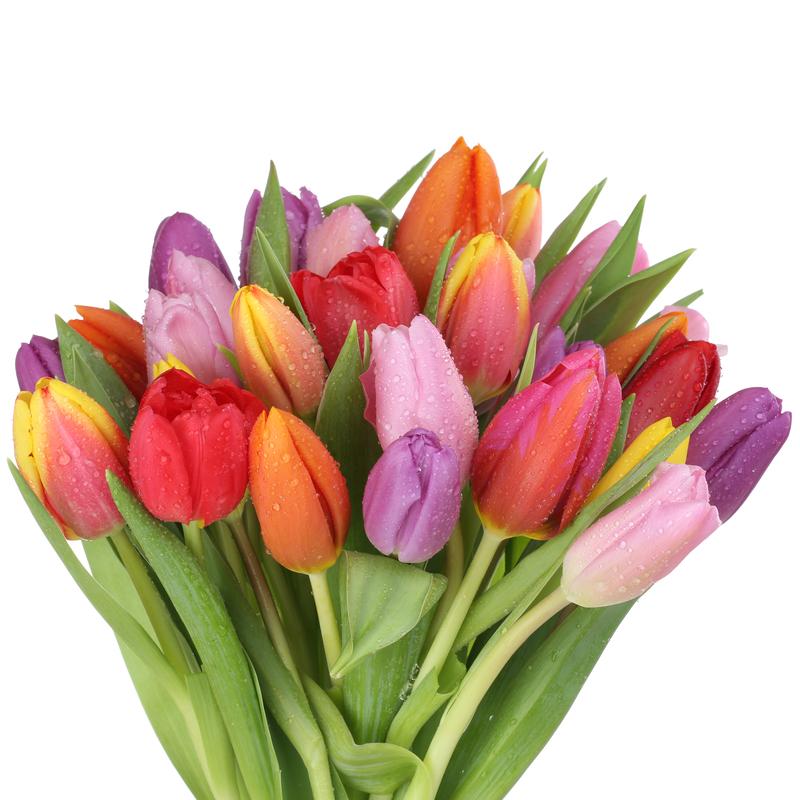 Livingflowers –  bestil blomster til døren